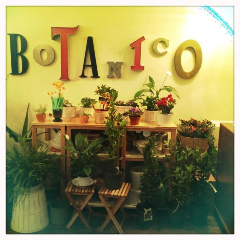 Bares originales en Zaragoza: Café Botánico